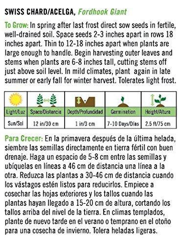Amazon.com : Fordhook Giant Swiss Chard/Acelga - English/Spanish : Garden & Outdoor