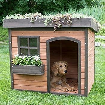 Amazon.com : Large Dog House Outdoor Pet Puppy Shelter
