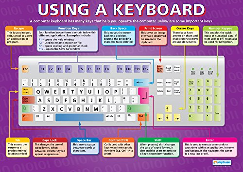 Keyboard Educational Lab Pack - Using a Keyboard | Technology and Computing Posters | Gloss Paper Measuring 33