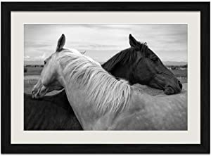 F.Mints Black and White Horse - E - Art Print Wall Black Wood Grain Framed Picture(20x14inch)