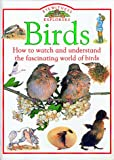 Birds, Jill Bailey, 1564580210