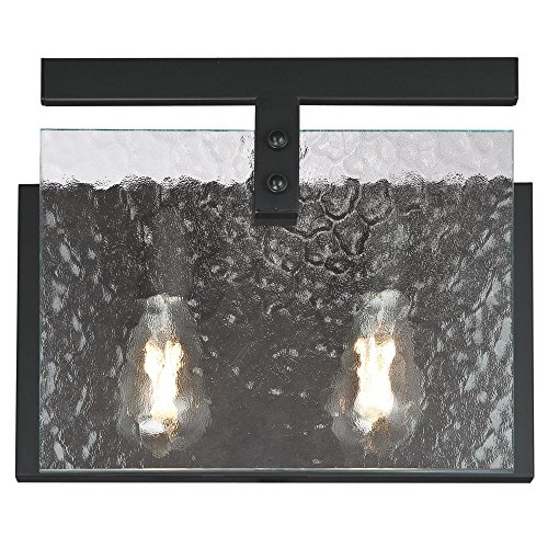 (Westinghouse Lighting 6352000 Zane Two-Light Indoor, Matte Black Finish with Clear Water Glass WALL)