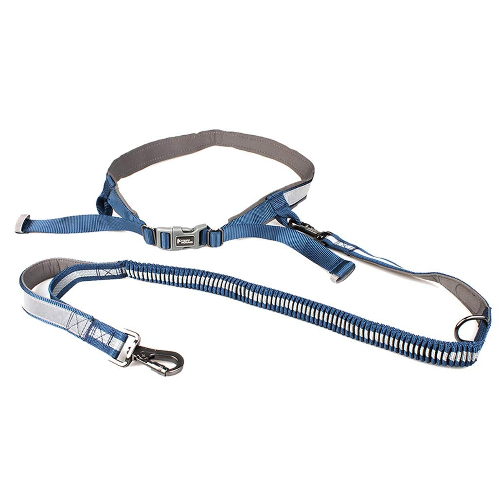 bluee LZRZBH Pet Supplies Dog Jogging Traction with Hyena Running Rope Running Dog Leash Pet Leash, Rope Length  110cm-160cm, Person Waist  30-130cm (color   bluee)