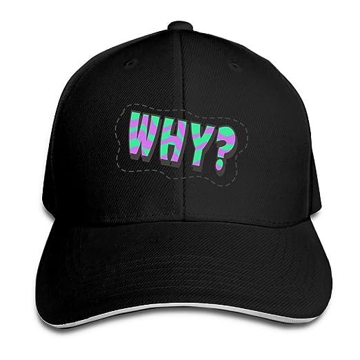 73a0ce7ea05 Efbj Baseball Cap Hip Hop Hat Cotton Sports Adjustable Casquette Cap Unisex  Why Classic Caps