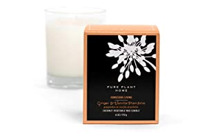 Pure Plant Home Stockholm Coconut Wax Candle