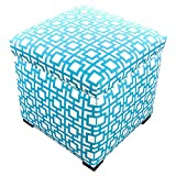 MJL Furniture Designs Tami Collection Fabric Upholstered Lift Top Storage Foot Rest Cube Ottoman, Gigi Series, Regatta
