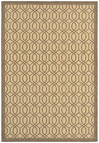 Buy shaw living rugs