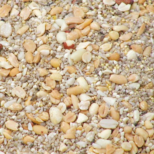 BestNest Wild Bird Seed Mix, Waste Free Blend, 50 lbs. by BestNest