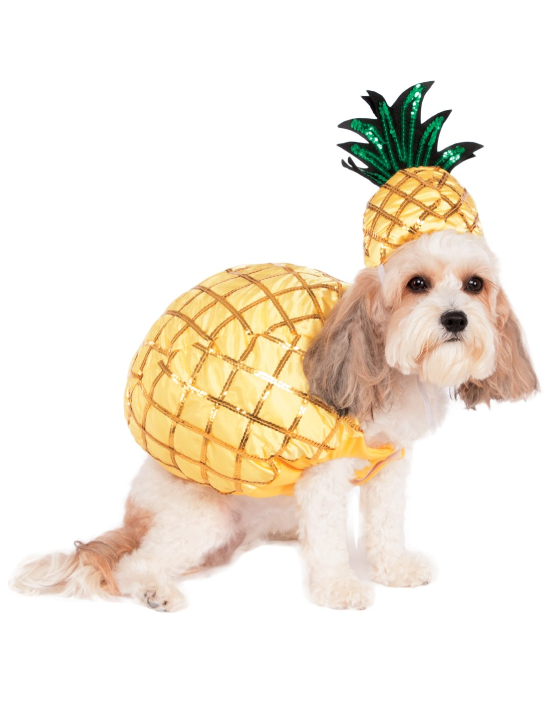 Rubie's Pineapple Pet Costume, Large