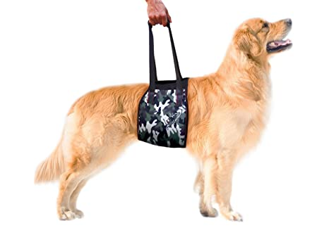 Pet Lovers Stuff Senior Dog Sling Harness Large Breeds - Rehabilitation  Harness for Canines Suffering Front or Hind Legs' Mobility Problems Due to