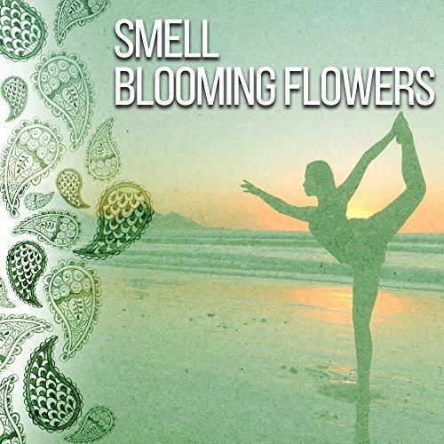Balancing Sides (Balancing Herb)