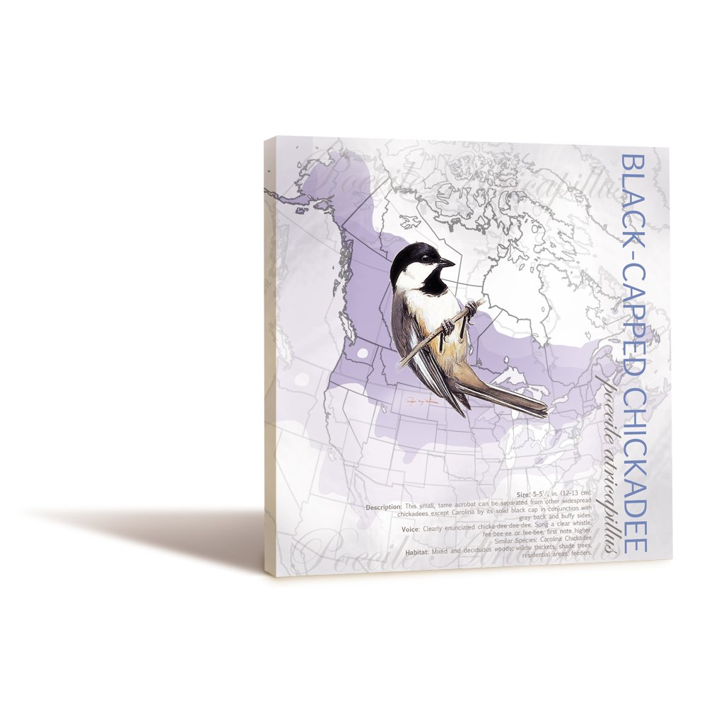 85354 11.25 x 11.25 Inches Black-Capped Chickadee by Roger Peterson Tree-Free Greetings EcoArt Wall Plaque