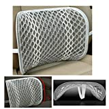 Car Lumbar Support Back Cushion with Breathable Mesh,Aumee Office Chair Lower Back Therapy Fatigue Relief Posture … (Grey)