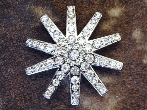 [SET OF 8 CLEAR RHINESTONE SPUR CONCHOS BLING HEADSTALL TACK COWGIRL] (Cowgirl Concho)