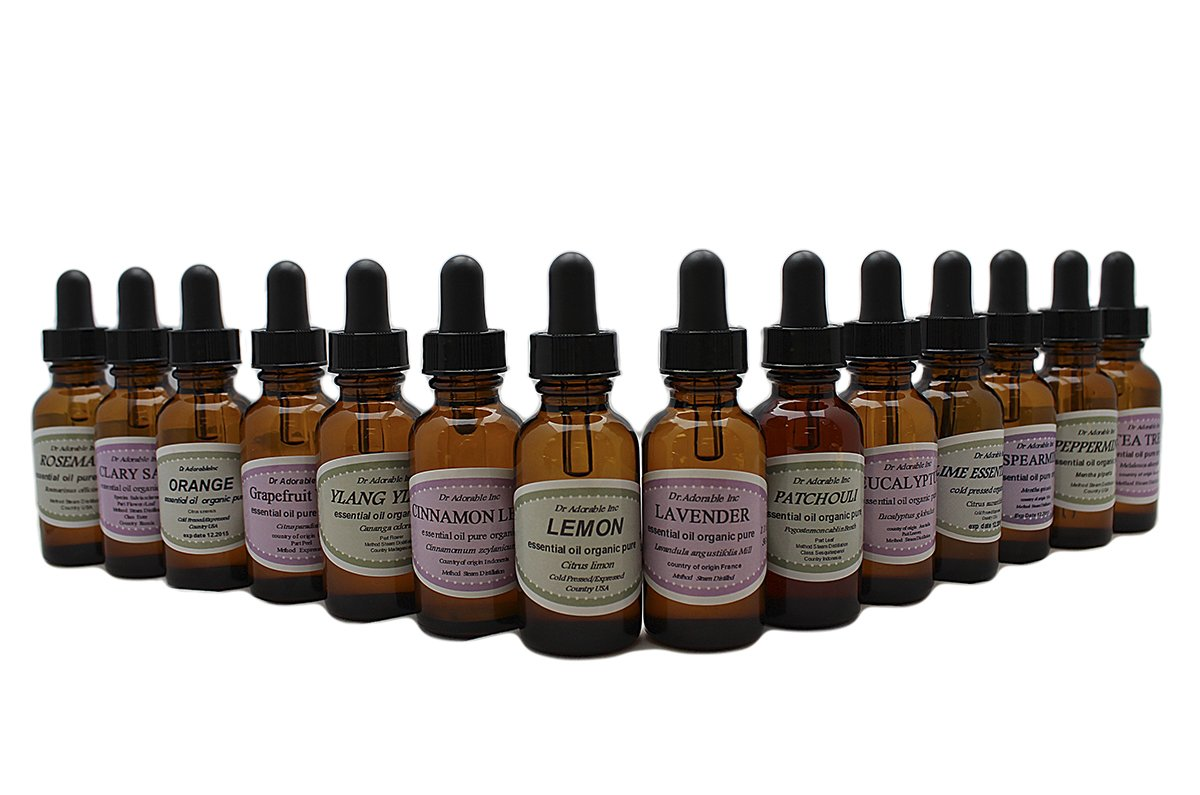Beginners Best of the Best Aromatherapy 100% Pure Therapeutic Grade Essential Oil Set 14/1 oz (Lavender Tea Tree Eucalyptus Lemon Orange Peppermint Clary Sage Cinnamon Leaf Grapefruit Lime Patchouli Rosemary Spearmint Ylang Ylang)