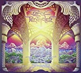Technicians Of The Sacred by Ozric Tentacles (2015-05-04)