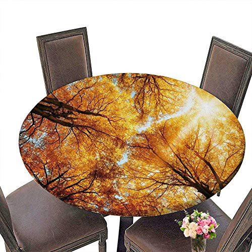 PINAFORE Picnic Circle Table Autumn meta Sequoia Trees for Family Dinners or Gatherings 55