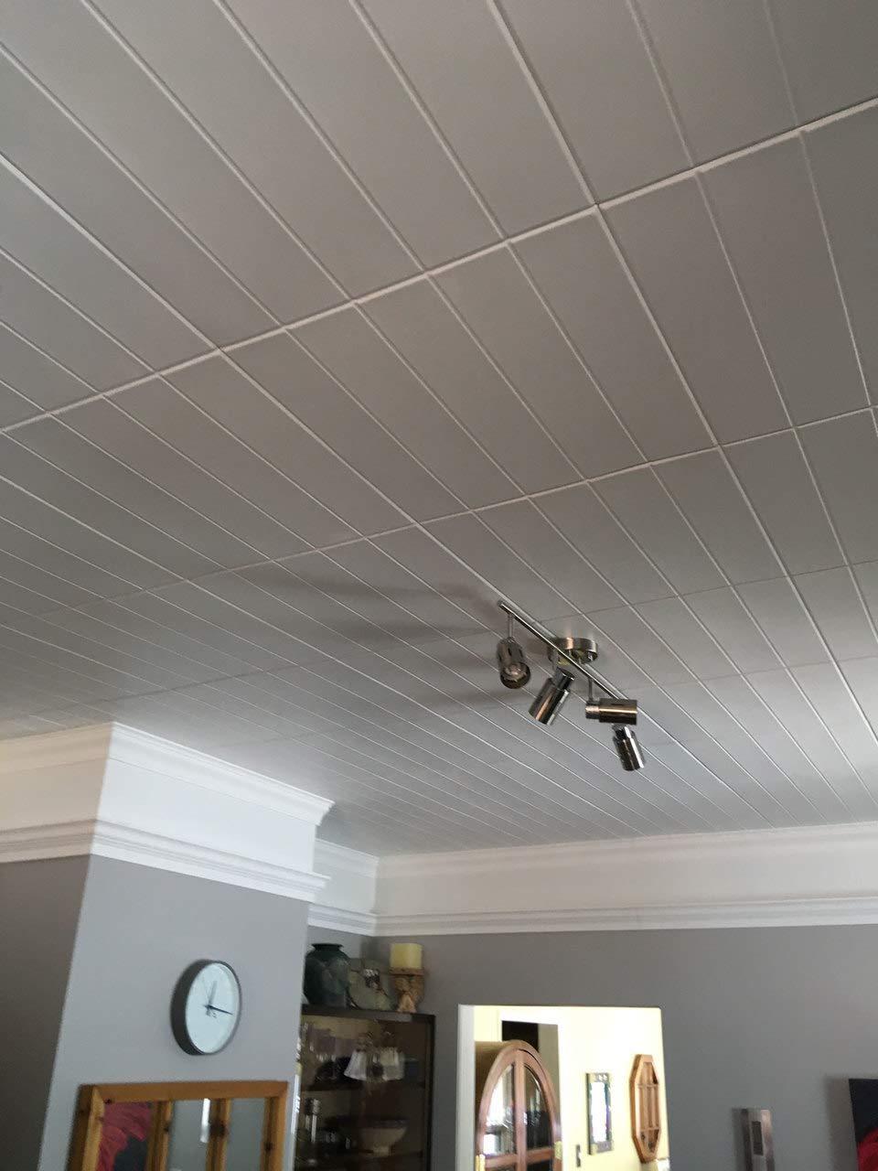 A la Maison Ceilings Model#804 Ceiling Tile (Package Of 8 Tiles), Plain White