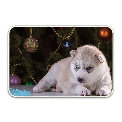 Husky Christmas Puppy.Amazon Com Husky Puppy Christmas Rug Non Slip Living