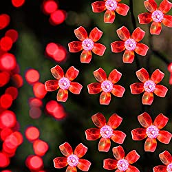 Solar LED String Lights, 100 Led Flower, 39.1ft, 9+ Hours Illumination, Waterproof, Outdoor Solar Fairy Lights, Christmas Lights, Ambiance Lights, Party Wedding Decorations (Red)
