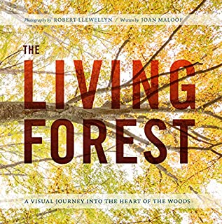 Book Cover: The Living Forest: A Visual Journey into the Heart of the Woods
