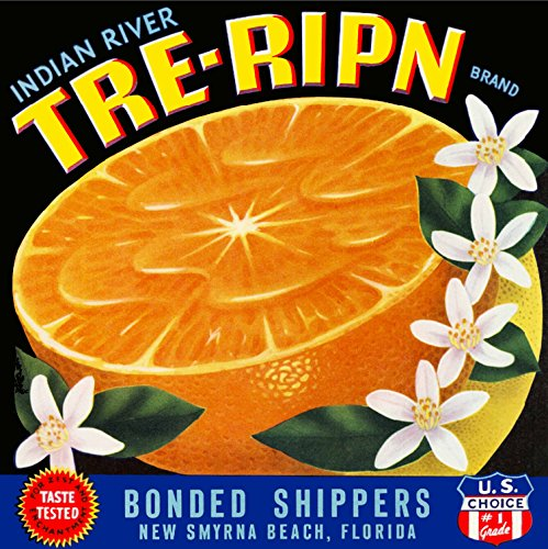 A SLICE IN TIME New Smyrna Beach, Indian River, Florida - TRE-Ripn Brand Orange Citrus Fruit Crate Box Label Advertising Art Print. Label Print Measures 10 x 10 inches