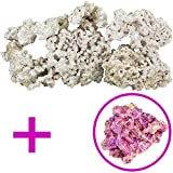 Dry Base Rock With Coralline Algae Bonus Rock For Saltwater Aquariums, 45 lbs.