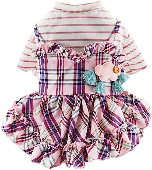 wikibird Señora Adolescente Falda Divertido Niña Hermosa Vestido ...