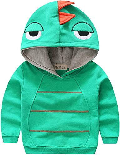 Aivtalk Boys Long Sleeve Dinosaur Hoodies Kids Sweatshirt Toddler Pullover Jacket 1-6T
