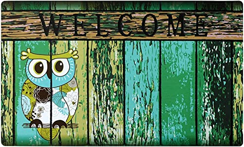 Welcome Doormat, Entrance Mat Floor Mat Rug for Indoor Outdoor Front Door with Non-Slip Rubber Backing, Printing Door Mat with Owl Pattern, 17 WX29 L Green