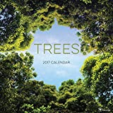2017 Trees Wall Calendar