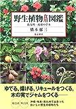 野生植物食用図鑑―南九州-琉球の草木