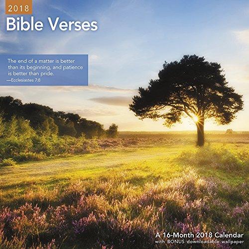 Bible Verse Calendar (2018 Bible Verses Wall Calendar (Mead))