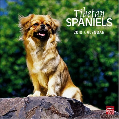 Tibetan Spaniels 2010 Square Wall (Multilingual Edition)