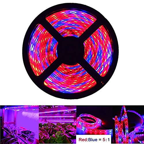 INextStation LED Strip Light Plant Grow Lights 16.4ft/5M 5050 SMD Waterproof Full Spectrum Red Blue 5:1 Growing Lamp for Aquarium Greenhouse Hydroponic Plant, Garden Flowers Veg Grow Light