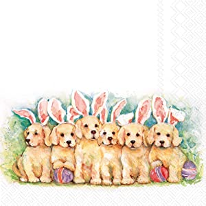 Boston International IHR 3-Ply Cocktail Beverage Paper Napkins, 5 x 5-Inches, Candy Dogs