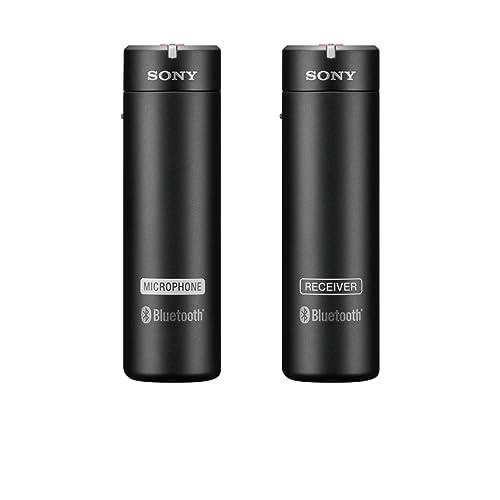 Sony ECM-AW4  : le meilleur de milieu de gamme
