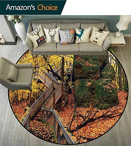(Woodland Area Rugs Ring 3D Non-Slip Rug,Scenic Autumn Landscape Foam Mat Living Room Decor Round-63 )
