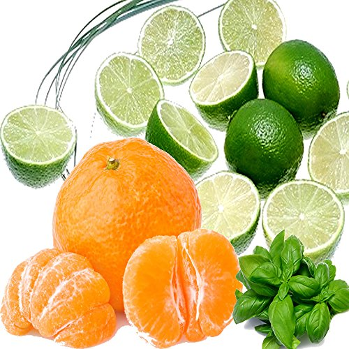 (LIME BASIL & MANDARIN Candle Making Fragrance Oil, Diffusers, Oil Burners 50ml/1.7oz VEGAN & CRUELTY FREE)