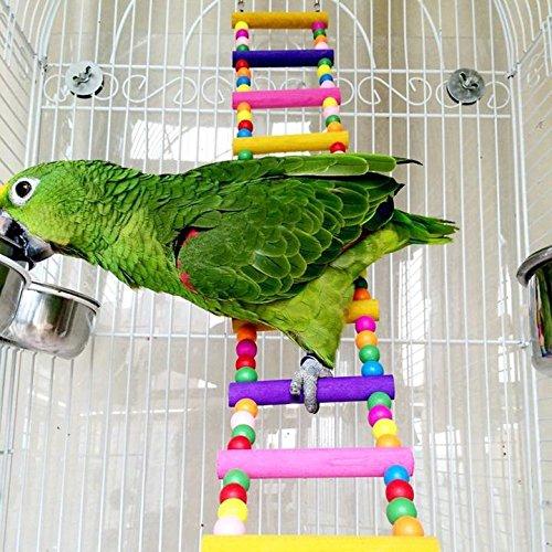 Rope Ladder Rainbow Bridge Bird Toy 22 Inch
