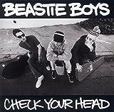 Check Your Head (2 LPs) [Vinyl]