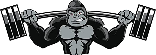 "Funny Gorilla Cartoon Car Bumper Sticker Decal /""SIZES/'/'"