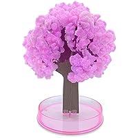 YiRAN Sakura Magic Growing Tree - Fai DIY Fai Crescere in 24h - Japanese Cherry - Regalo Creativo per Bambini e Amici