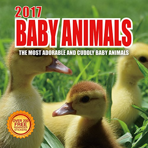 2017 Baby Animals Calendar - 12 x 12 Wall Calendar - 210 Free Reminder Stickers