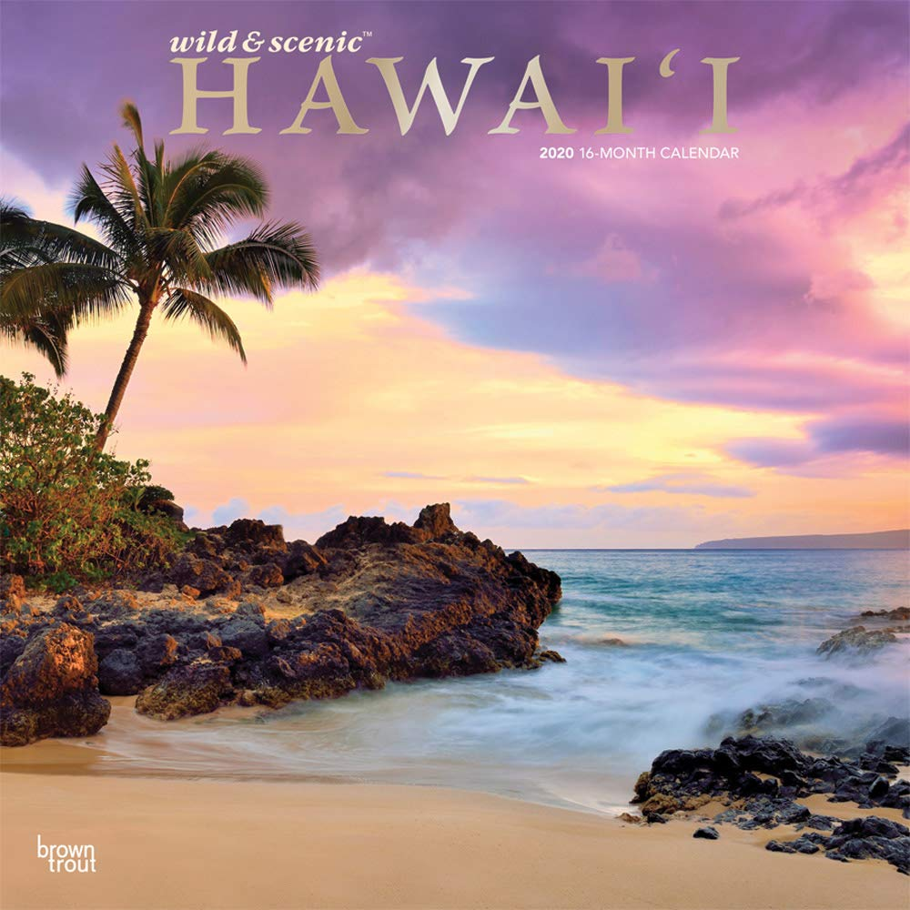 Hawaii 2020 12 X 12 Inch Monthly Square Wall Calendar With Foil Stamped Cover Usa United States Of America Noncontiguous State Nature English Spanish And French Edition Browntrout Publishers Inc Browntrout Publishers