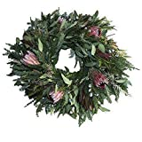 """Furrow & Vine – Fresh Protea and Mixed Greenery Wreath (24"""") – Handcrafted in the USA – Decorates any Door or Wall Inside or Outside"""