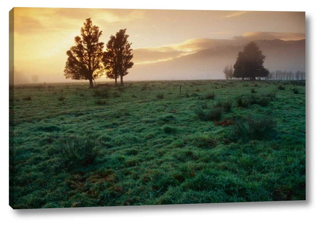 "Dawn Light Over South Island farmland, New Zealand by Andy Reisinger - 24"" x 36"" Gallery Wrapped Giclee Art Print on Canvas - Ready to Hang"