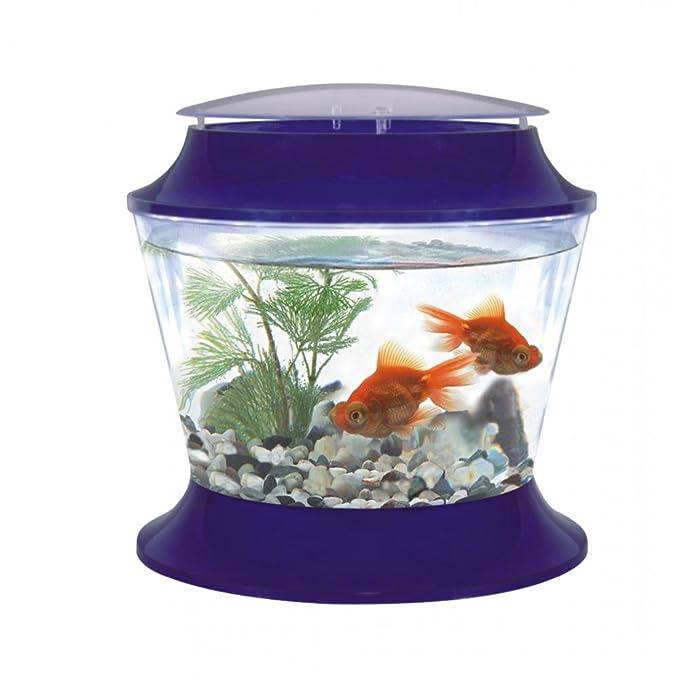 Fish R Fun - Pecera de plástico con tapa (37 x 36.6cm/Al