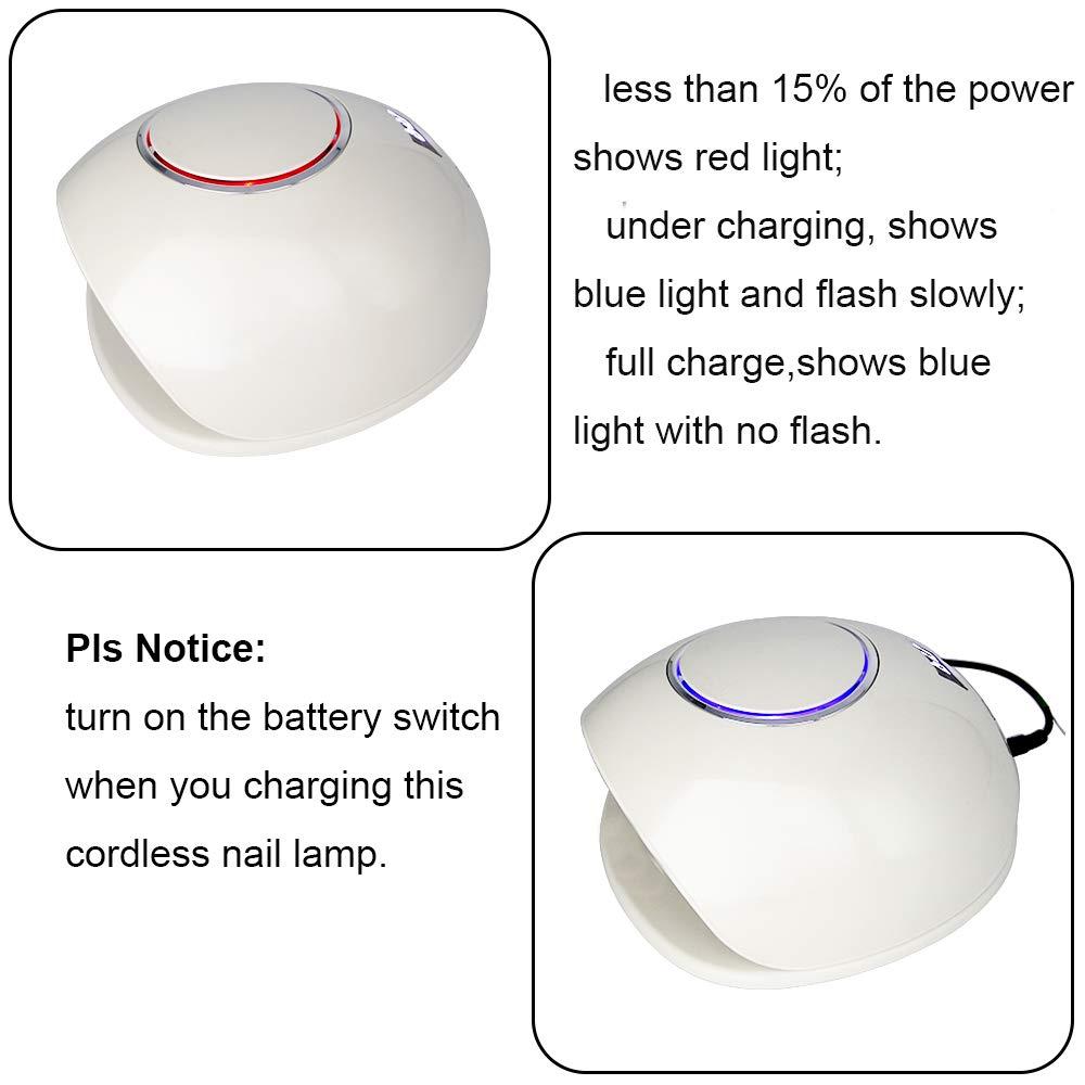 Amazon.com: Wisdompark - Lámpara LED UV de 48 W para secado ...