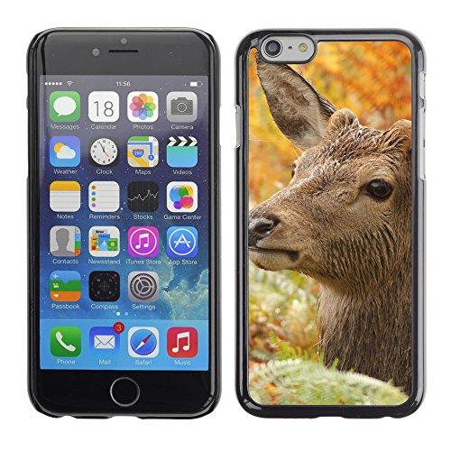 "Premio Sottile Slim Cassa Custodia Case Cover Shell // F00013953 cerf // Apple iPhone 6 6S 6G PLUS 5.5"""